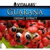 Guaraná - 90 comprimidos 1